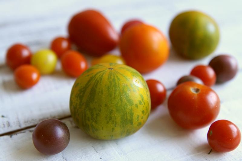 Fassifern tomatoes