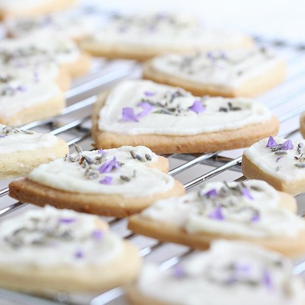 lavendar-shortbread3-square